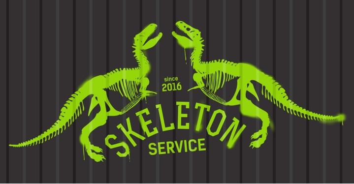 Сервисный центр Skeleton - ремонт любой техники на Позняках